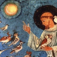 8 ottobre, Cammino a La Verna – Omaggio a Francesco