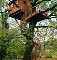 La casa sull'albero, Lo Zefiro 13gen'18 Marco Lazzeri