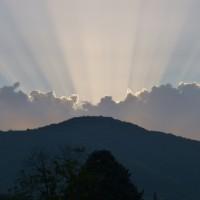Un 3 agosto tra Rane, Tartarughe e Alberi in un bellissimo ambiente meditativo