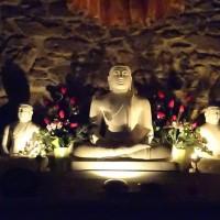 Oltre la rete del karma, gli insegnamenti di Tae Hye sunim marzo '20