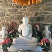 Giornata di consapevolezza, secondo la tradizione di Thich Nhat Hanh a Plum Village 12lug20