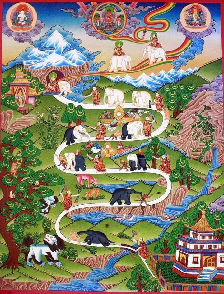 Elefante 142 KB