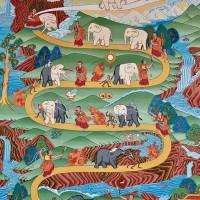 Addomesticare l'Elefante di Aurora Maggio